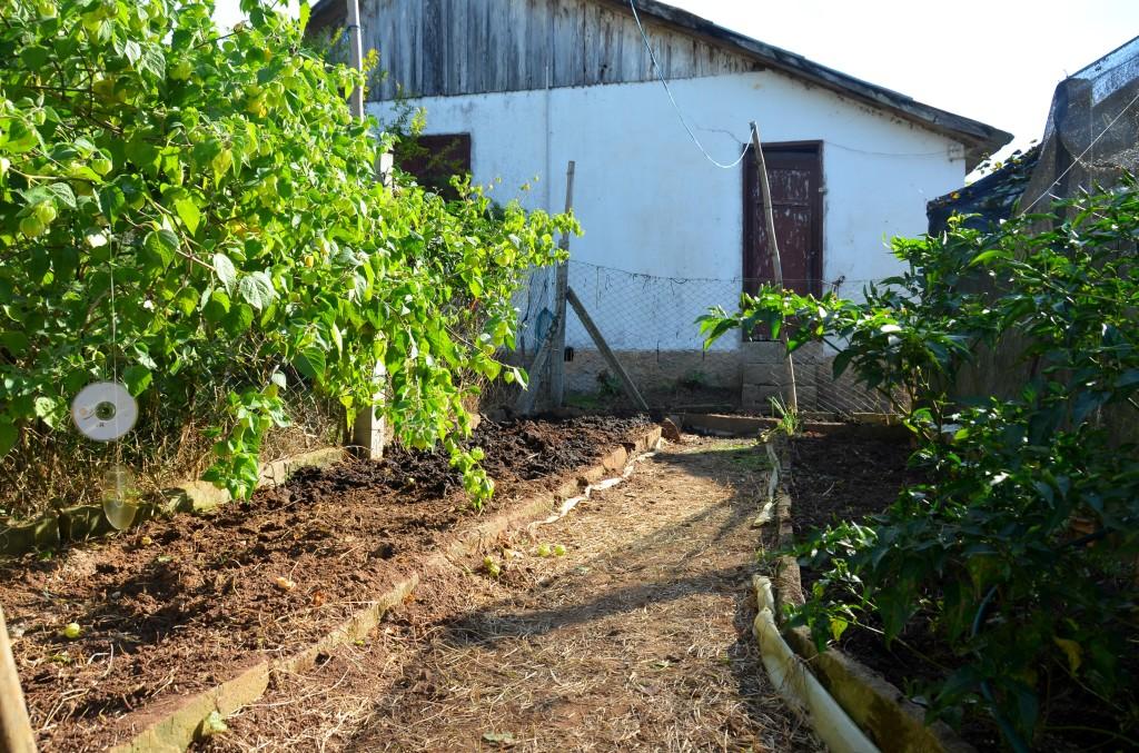 Uma horta em preparo, pronta para novas plantas, novos legumes, temperos, folhas, insetos, sol e chuva.