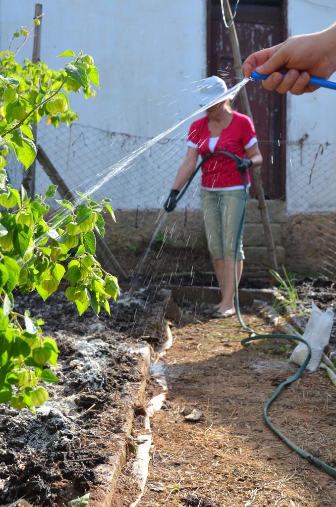 Um pouco de terra, um pouco de compostagem, um pouco de adubo, água, calor e tempo. Logo virão as mudas e tudo florescerá.