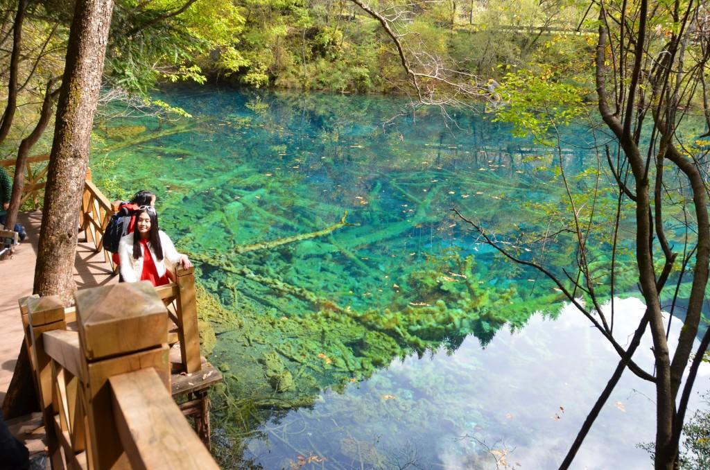 Parque Nacional de Jiuzhaigou lago azul transparente troncos submersos