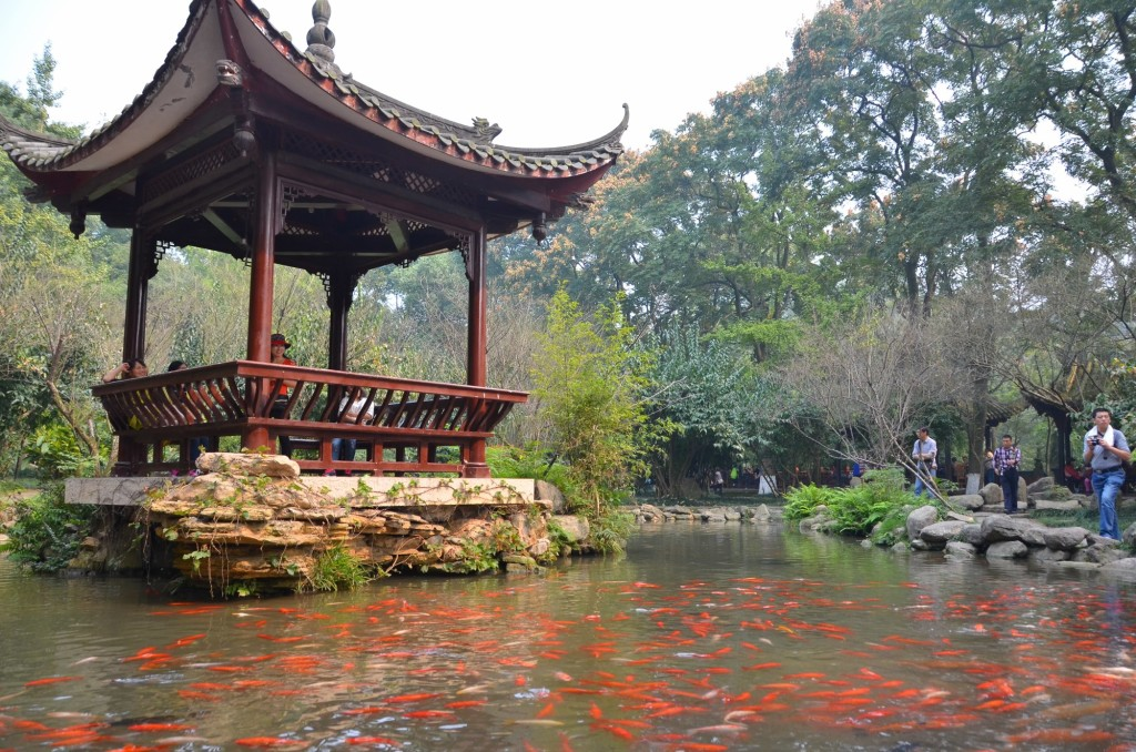 peixe vermelho coreto chinês
