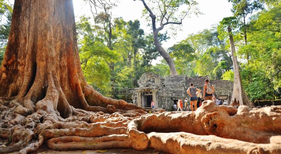 Entrada tempo Ta Prohm, siem reap, cambodia