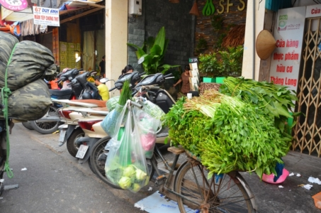 ervas aromáticas, tempero, bicicleta, vendedor de rua, comida de rua, vietnam, hanoi