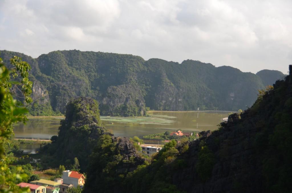 tam coc, campos inundados, vietnam, campo de arroz, bich dong