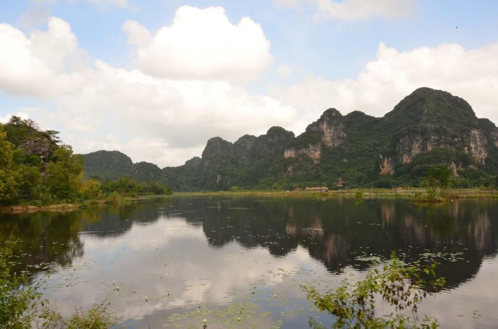tam coc, ninh binh, vietnam, campos de arroz