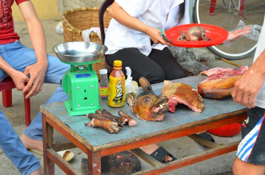 carne de cachorro, vietnam tam coc