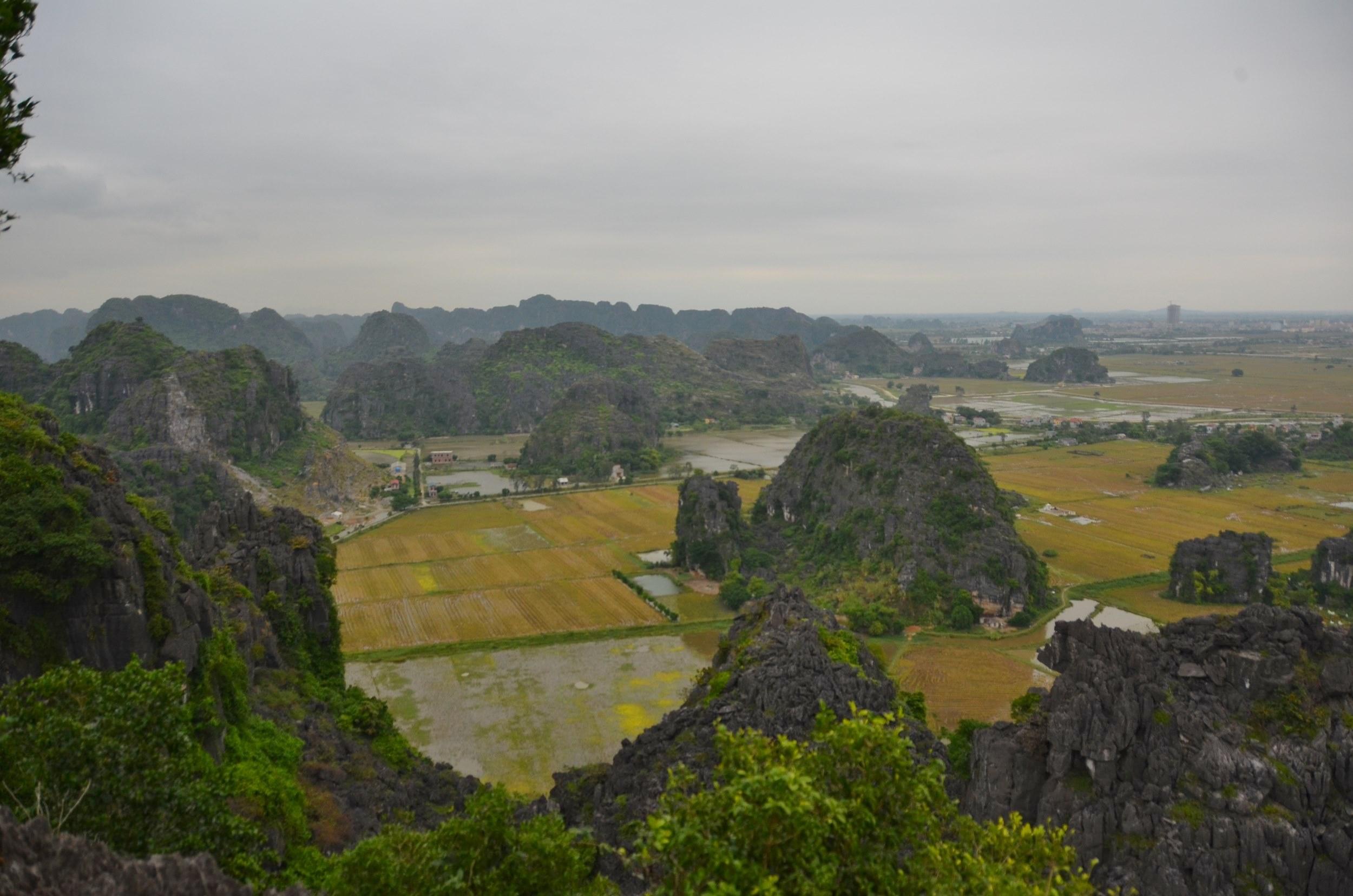 ninh binh, campos de arroz, arroz, tam coc, vietnam, montanhas
