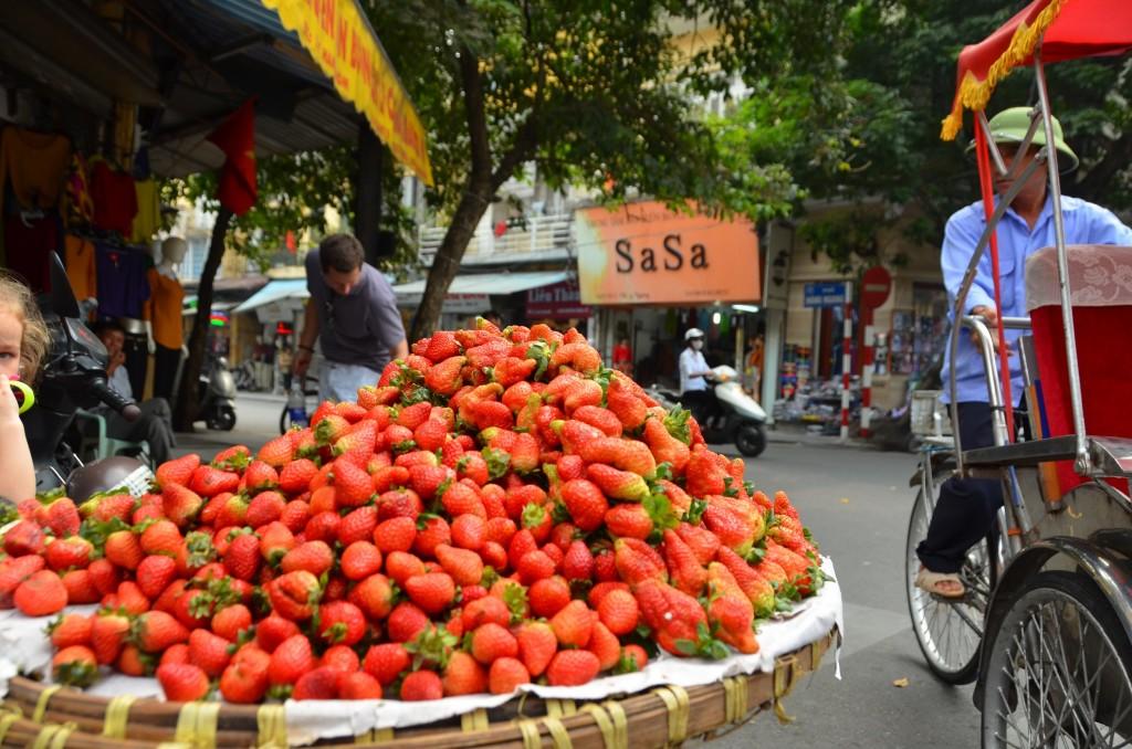 morando, hanoi, vietnam, cesta, vendedor ambulante