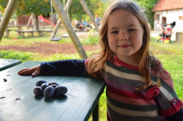 ameixa, criança, alemanha, o que minha filha aprendeu viajando